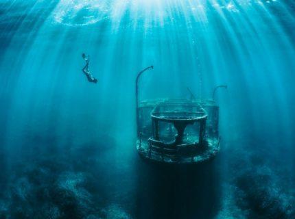 Plongée-nature-plongées-Corse
