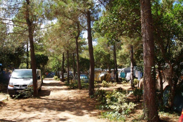 Camping-campdiliccia-voyage-bonifacio-corse