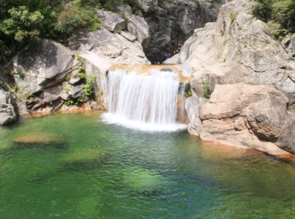 Corsica-forest-activités-mutagna-Corse.jpg