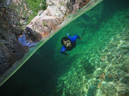 ParcAventureXtreSud-activités-Corsica.jpg