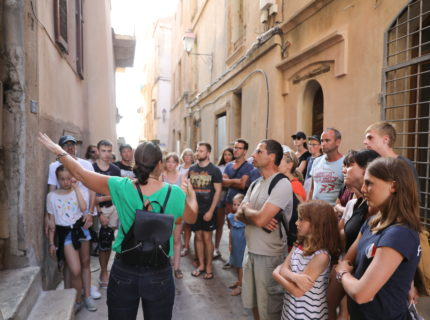 Guided tour « discovery »