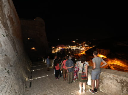 « night » guided tour