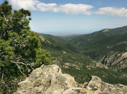 Montagne-Corsica-andonnée-balade-Corse.jpg